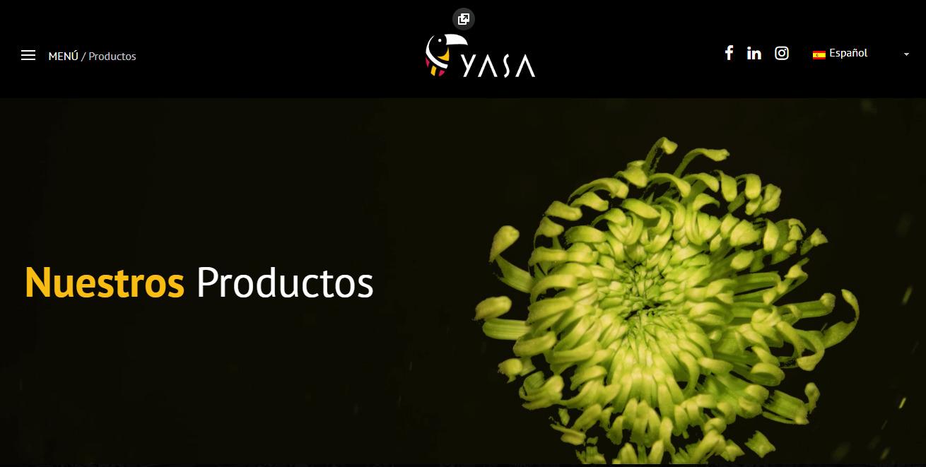 www.yasacisa.com